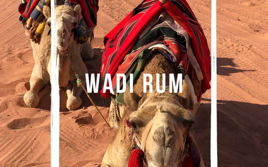 5 bonnes raisons de découvrir le désert du Wadi Rum